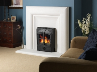 Esse 301 Crossed Multifuel Stove